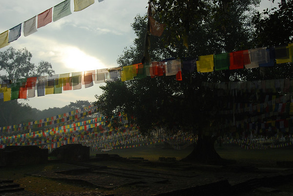 Lumbini, Buddha's birthplace